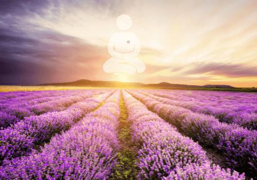 Kostenloser Download - Meditation: Öffnen dich für ein Leben als Mutter